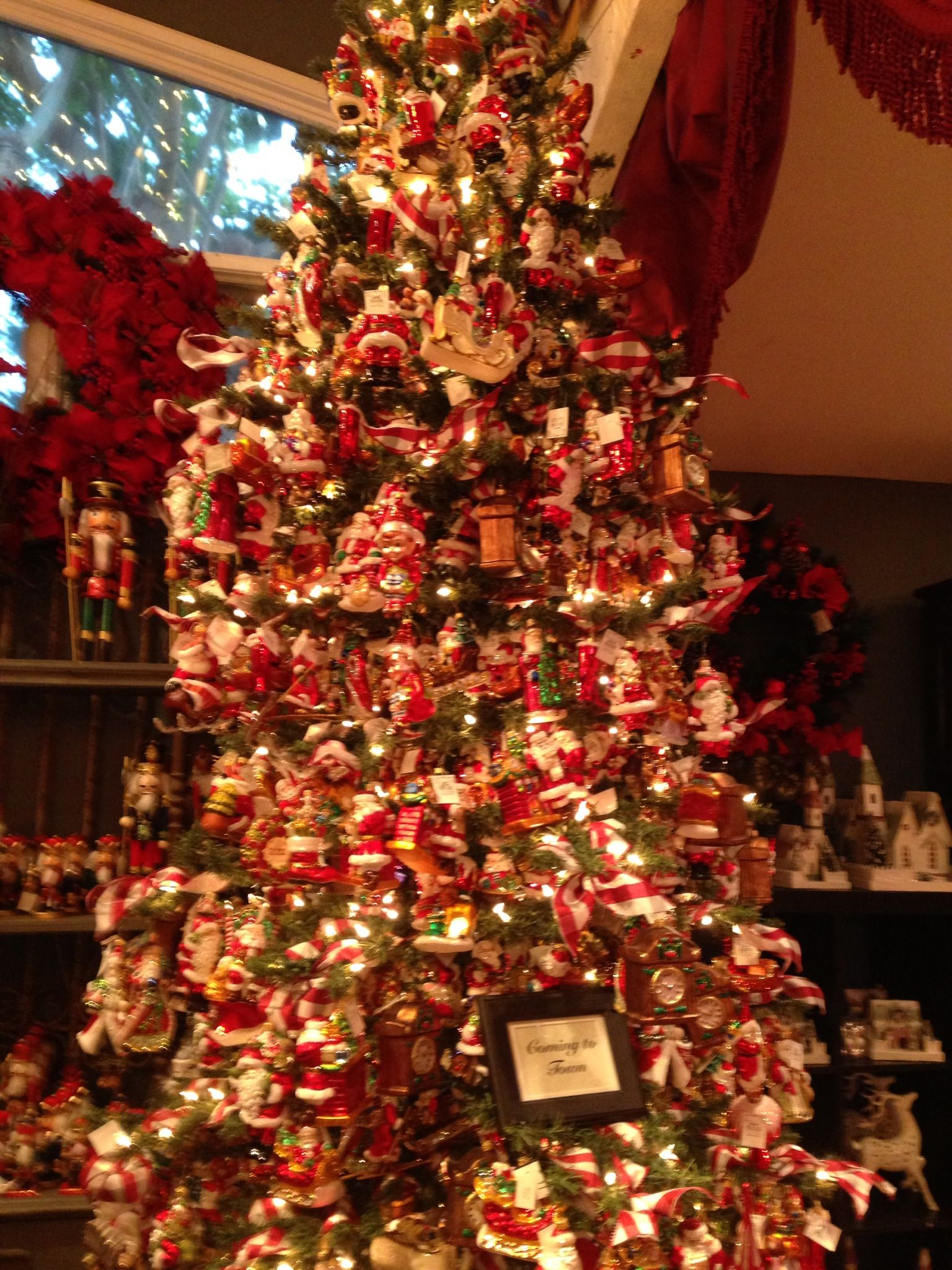 Christmas tree at Rogers Gardens in Newport Beach ...