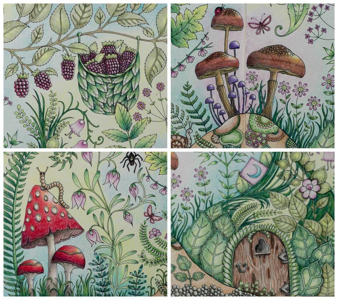 detaily #enchantedforest #coloring #johannabasford #jardimsecreto #jardimcolorido #secretgarden