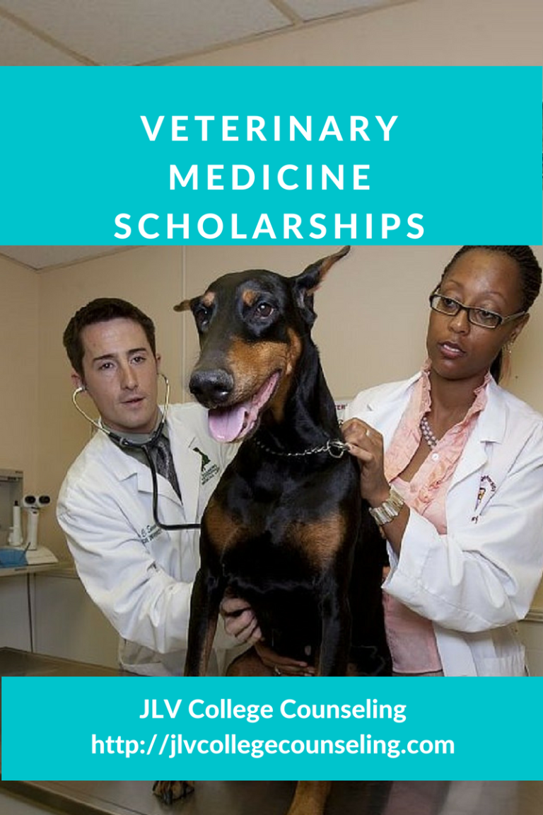 Veterinary Scholarships JLV College Counseling