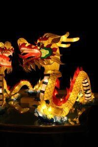 Discovery Days Happy Chinese New Year Chinese New Year Chinese New Year Crafts Happy Chinese New Year