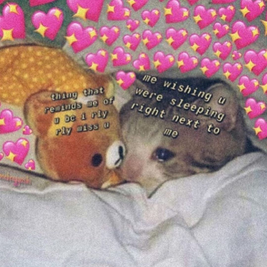 I Miss You Too Much Follow Me Wholesomelxve For More Cute Love Memes Love Memes Cute Memes