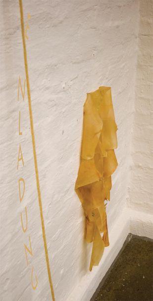 franziska kessler, ausstellung 2007 in der galerie im fürsthof, hochstiftung neumünster