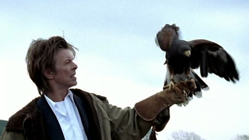 David Bowie with Falcon
