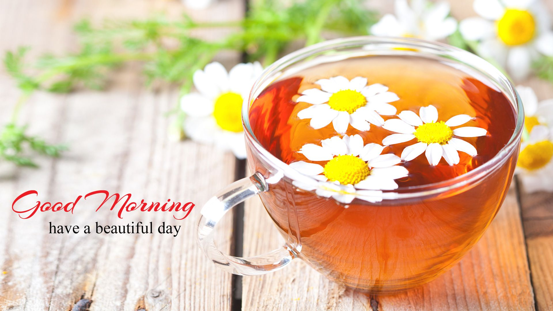 Good Morning Wallpaper with Flowers, Full HD 1920x1080 GM
