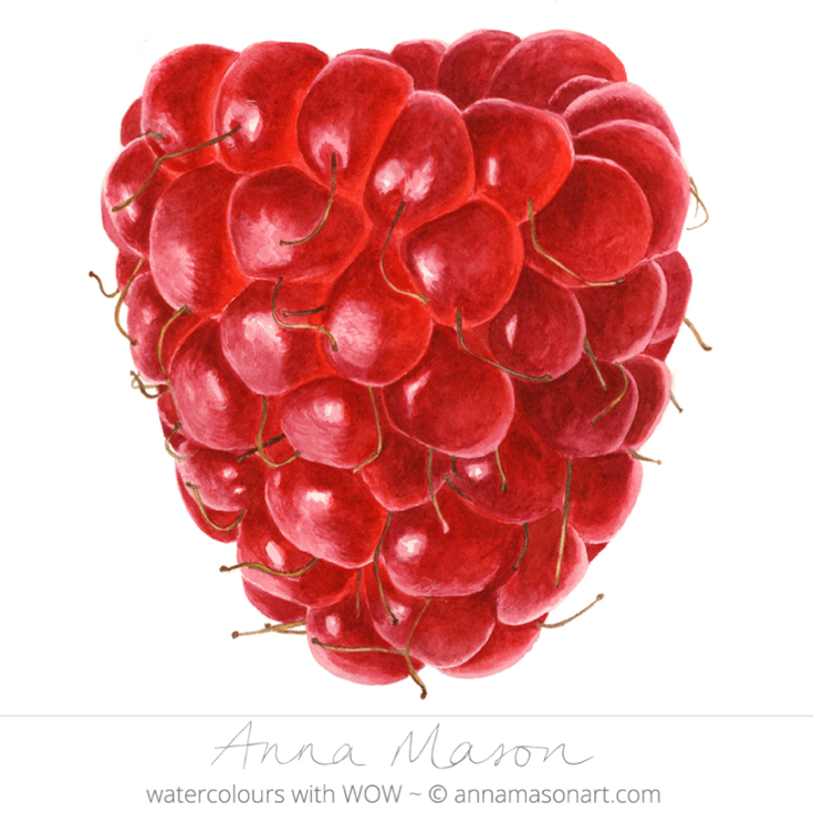 There are several textures to capture in this shiny, hairy (and delicious!) summer fruit close up