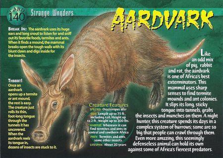 Image - Piranhas back.jpg | Weird n Wild Creatures Wiki