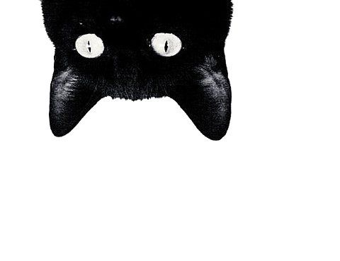 Image result for black cat emoji Good to Know! Cats, Cat art