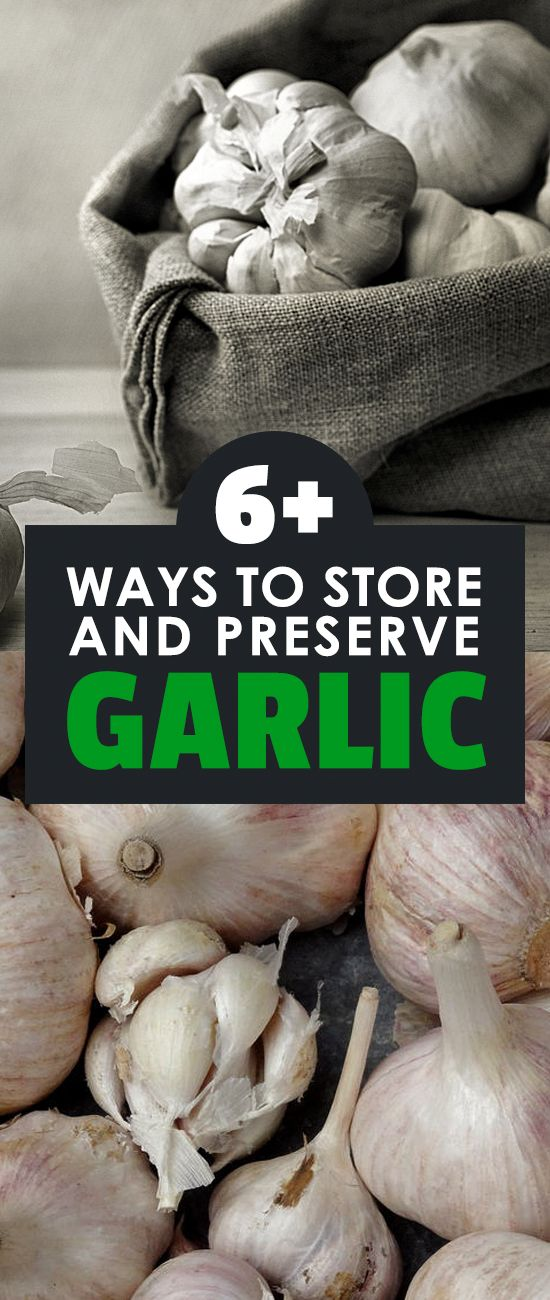6 Different Methods for Storing Garlic How to store