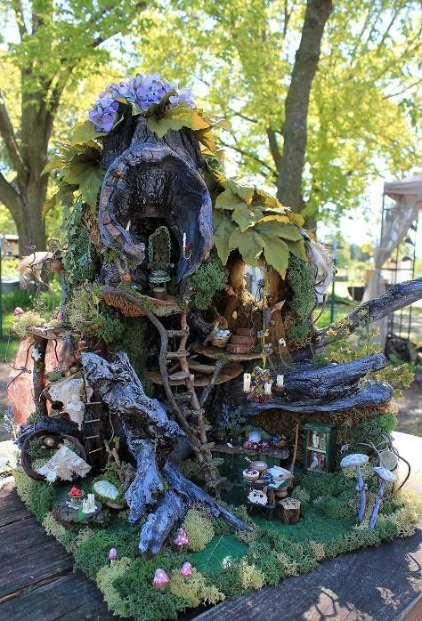 Gnome In Garden: Fairy Gardens/Fairy & Gnome Homes
