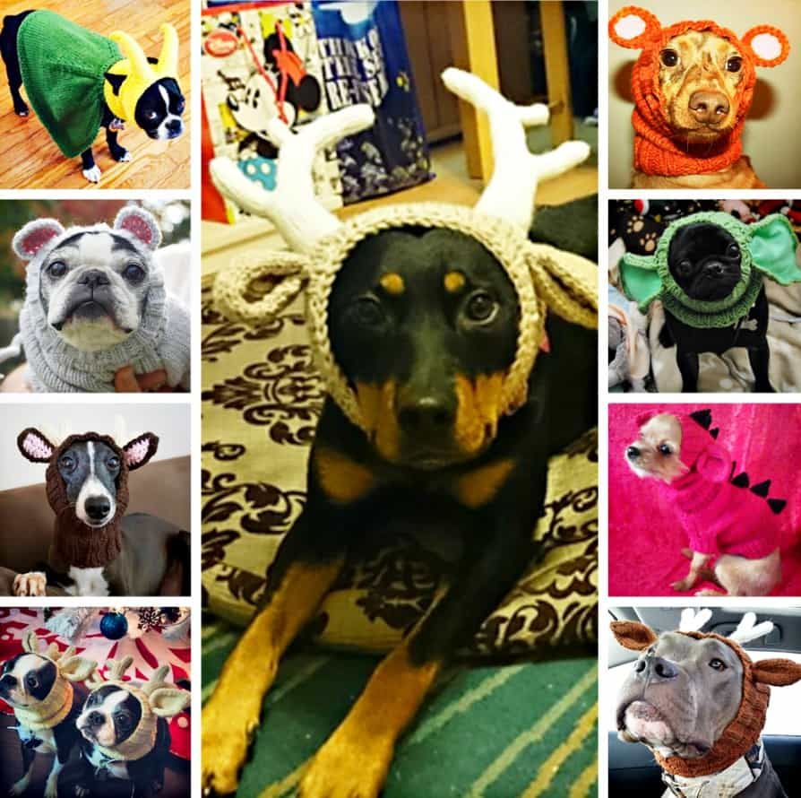 Crochet dog hat free patterns with video free pattern dog and crochet dog hat free patterns with video bankloansurffo Image collections