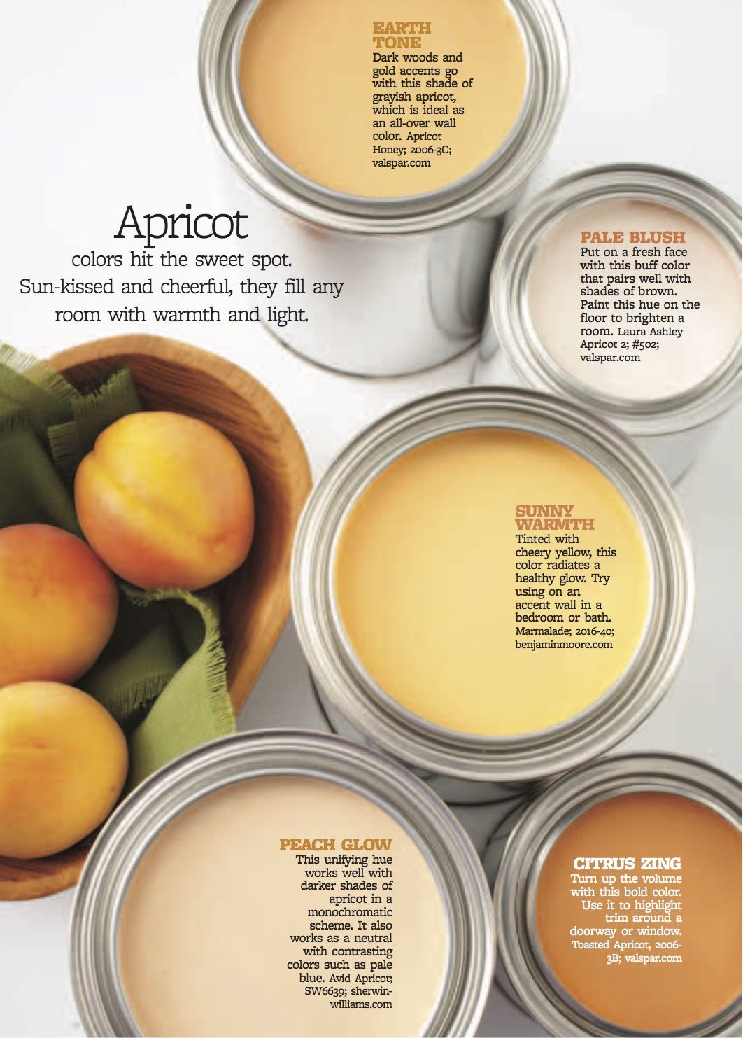 Color Personality: Vibrant Apricot | A touch of color | Pinterest ...