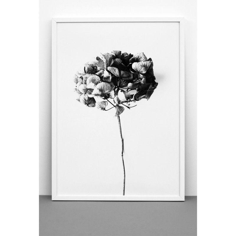 ちょいエレガントな 植物アートが今キてます One Must Dash Honey Honey アートプリントポスター 50x70cm モノクロ 北欧 スウェーデン イギリス アートポスター 壁掛け 絵 ポスター インテリア