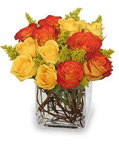 PHOENIX FLAME Rose Arrangement http://www.villagefloristandgifts.com/product/va4809/phoenix-flame