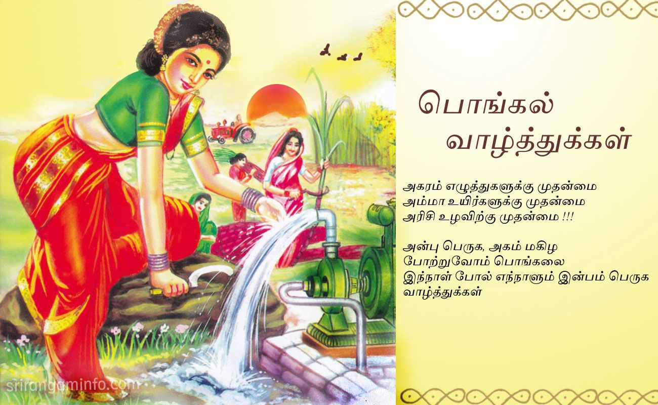 Pongal Greetings Sri Guru Constructions Pinterest