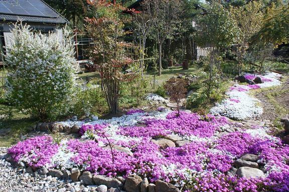 Spring In Takahiko S Garden Garden Nature Images Nature