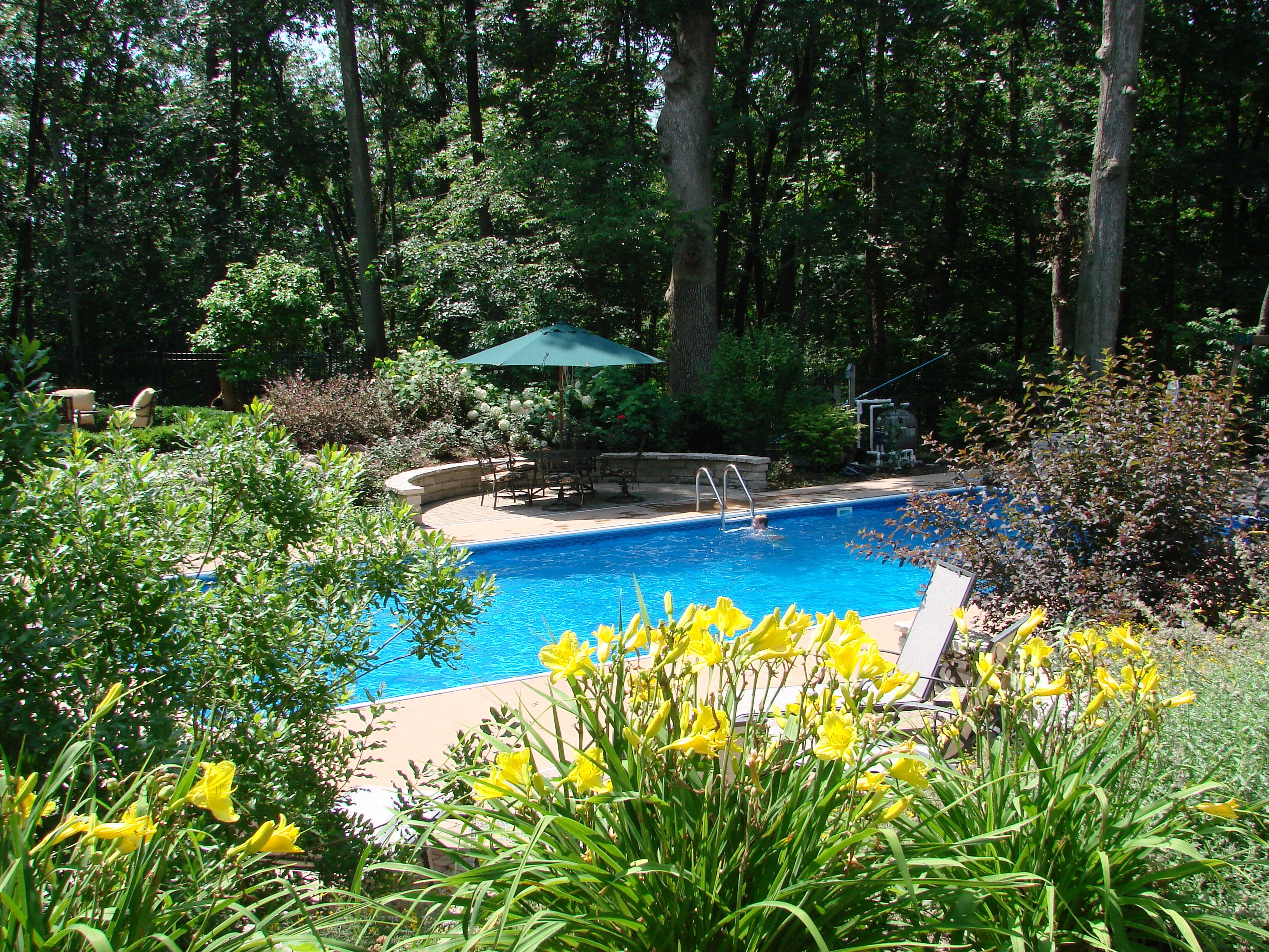 Landscaping around pool garden pinterest landscaping for Gardens around pools