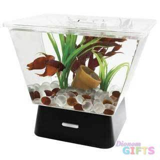 Tetra 1 Gallon Led Betta Tank Never Put Your Betta In This They Need At Least 3 5 Gallons With Images Cool Fish Tanks Betta Fish Tank Betta Tank