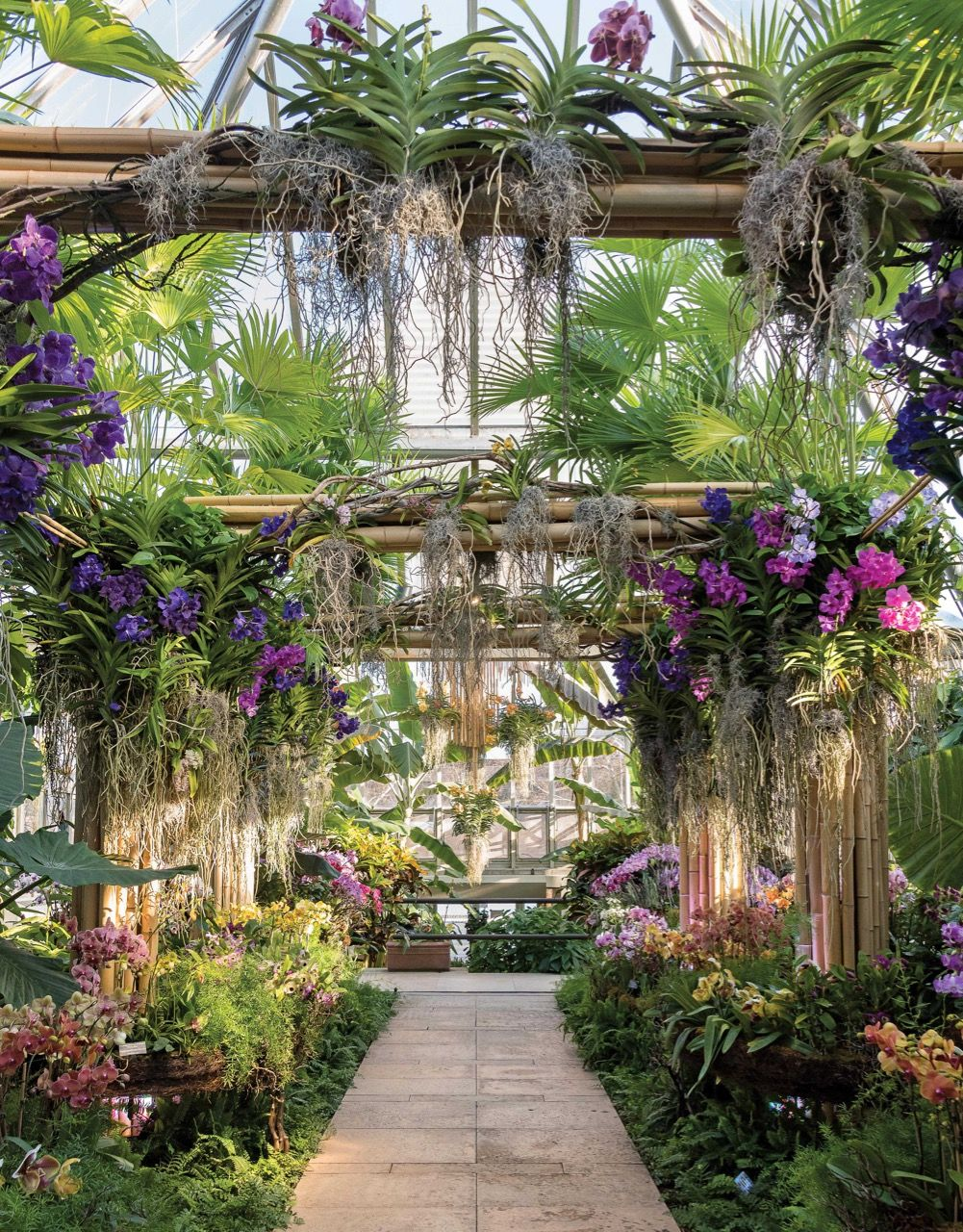 Escape to the tropics at the Chicago Botanic Garden Orchid Show #botanicgarden