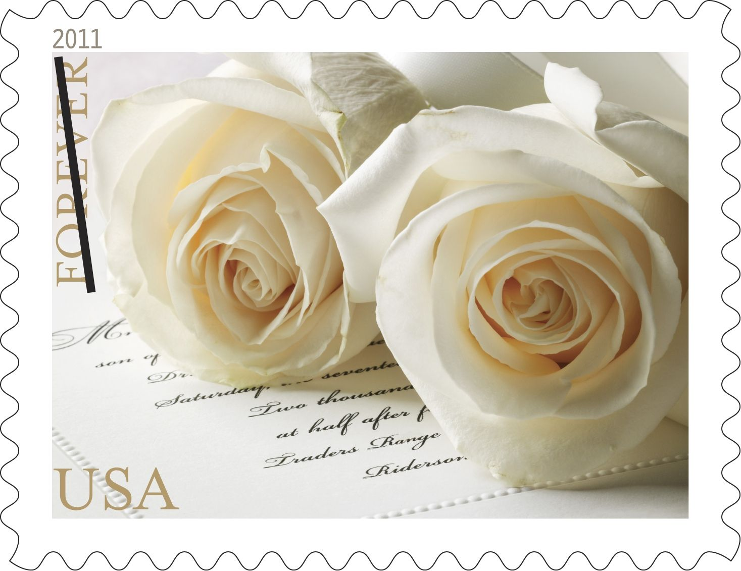 Wedding Roses Stamps For Invitations