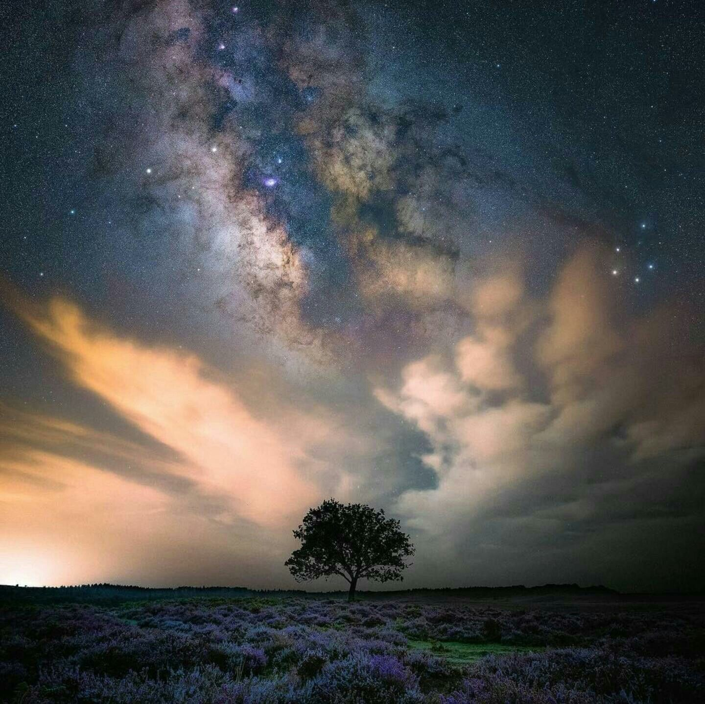 Pin By Ayesha Ansari On Amazing In 2019 Star Photography Milky Way Sky