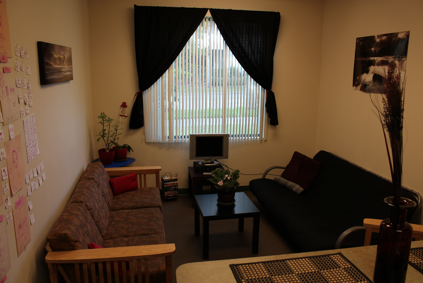 Hang Curtains To Dress Up Your Windows Like In This Room Usf Holly Apartments