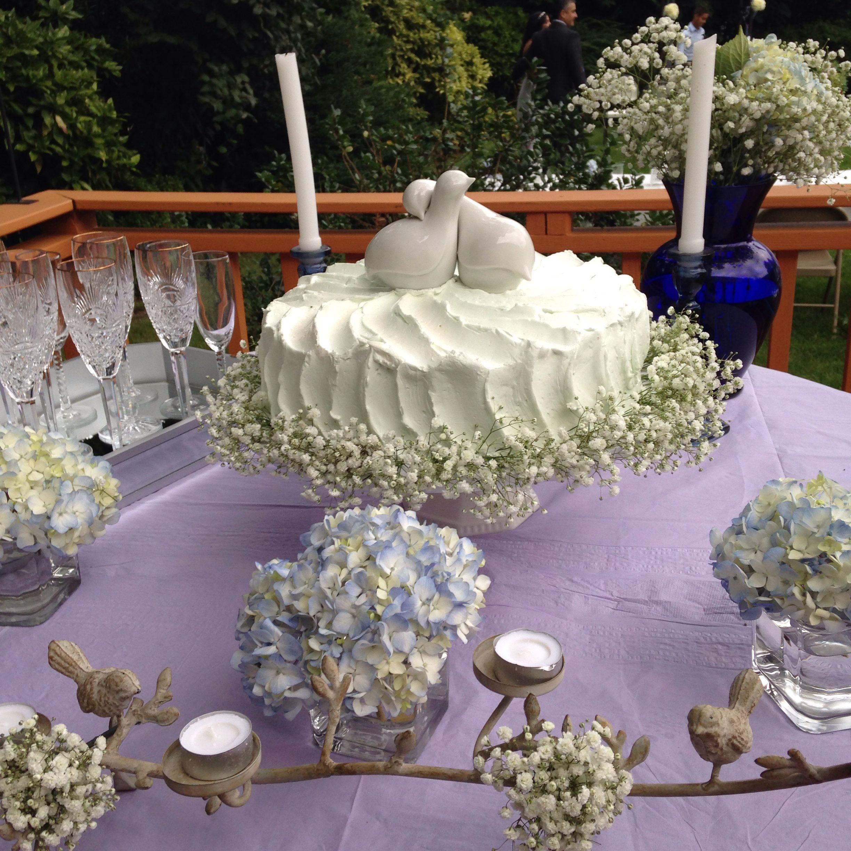 Single tier cake buttercream frosted babyus breath hydrengeas