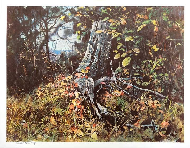 """""""Tree Roots"""" Fine art landscape print (165/500) by G. Miller. Image size 20 x 26 inches. Paper size 22 x 28 inches."""