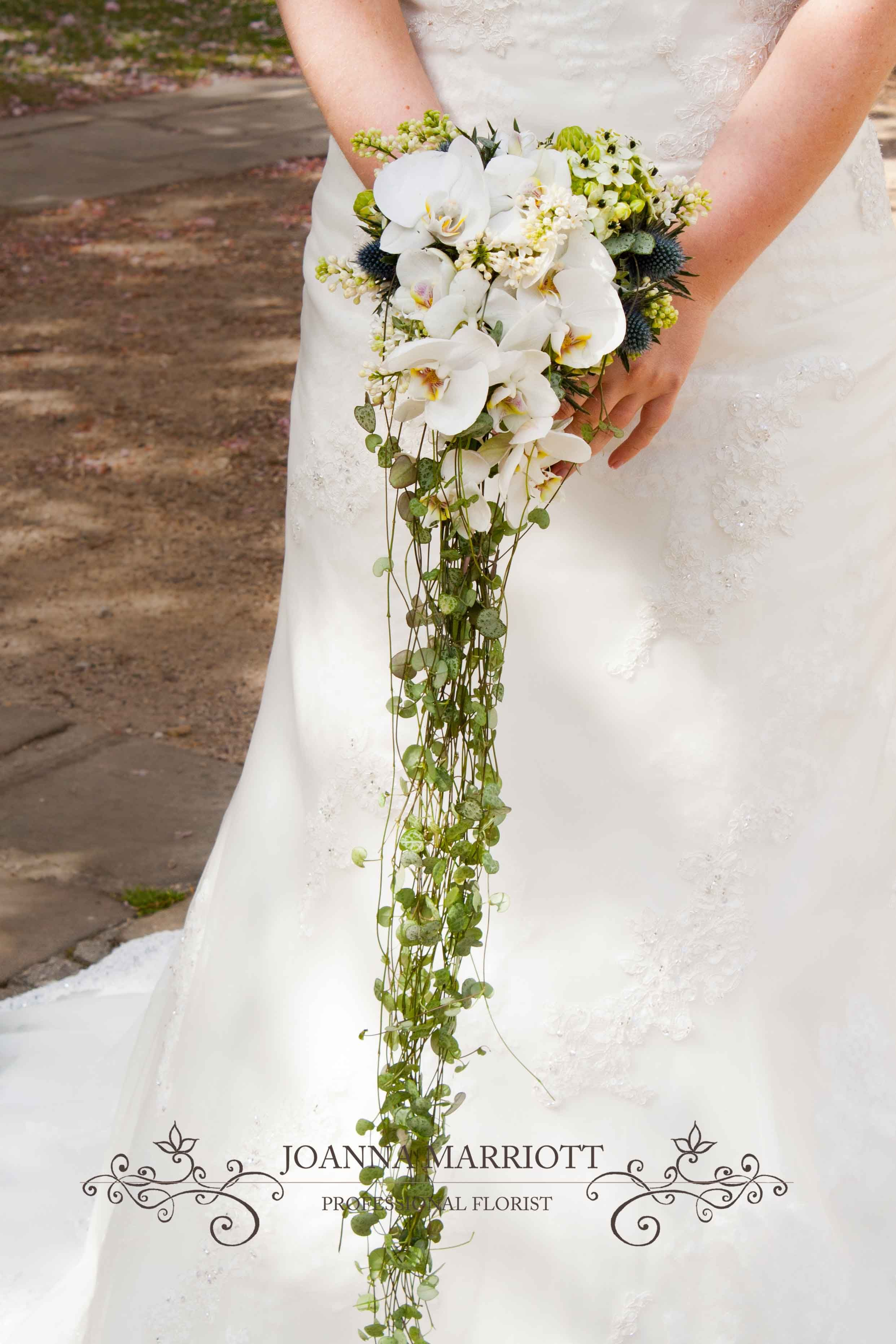 Trailing White Bridal Bouquet Made Of Trailing Ceropegia White Orchid Ornitogalum White Lilac And Thistle White Bridal Bouquet Bridal Flowers White Orchids