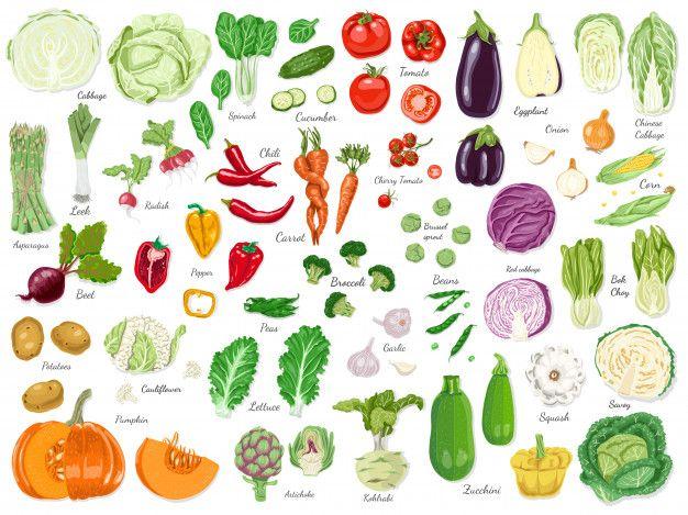 Big set of colored vegetables Premium Ve  Premium Vector