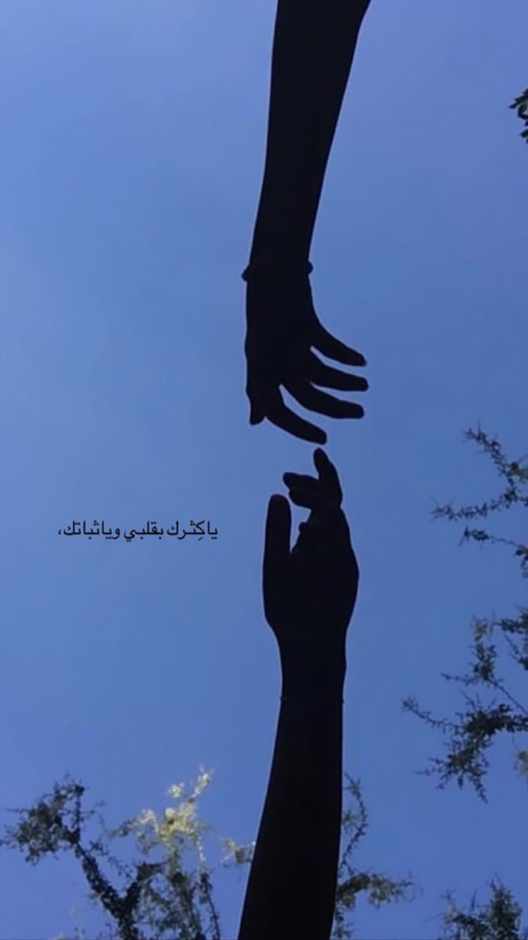 Pin By Zahraa Alasady On سنابات Beautiful Arabic Words English Love Quotes Arabic Funny