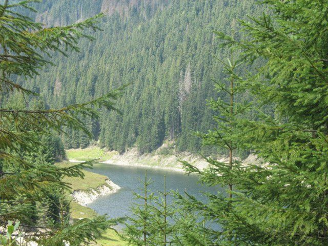 lacul galbenu