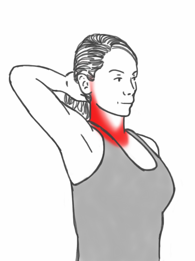 Neck Stability - Neck Retraction Exercise against a Hand | Workouts ...