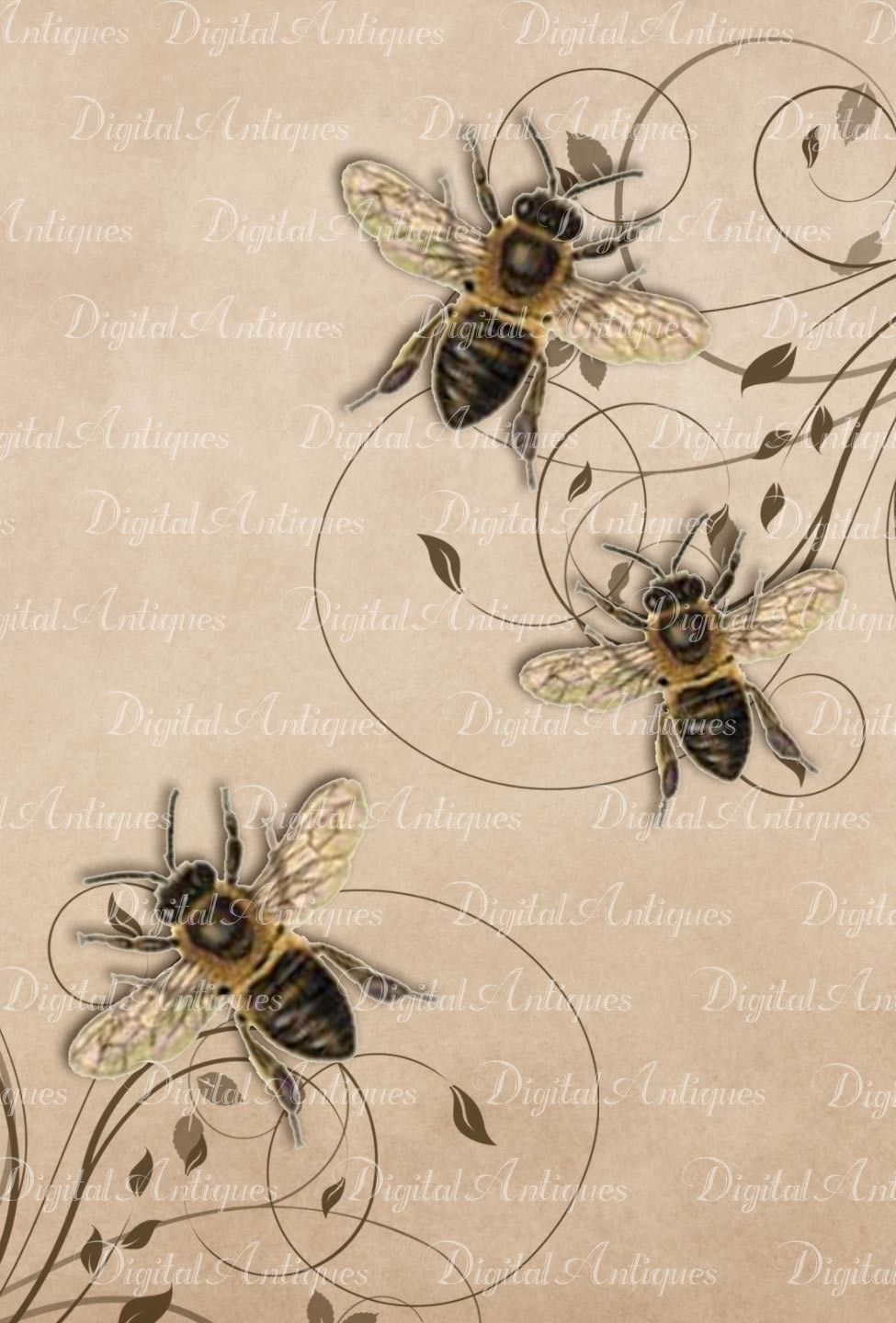 Vintage Bees Printable Images Digital Download. $3.50, via Etsy.