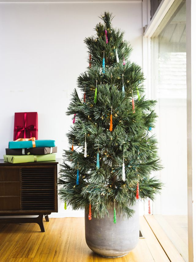 Marvelous Caring For A Live Christmas Tree Part - 4: Superb How To ...