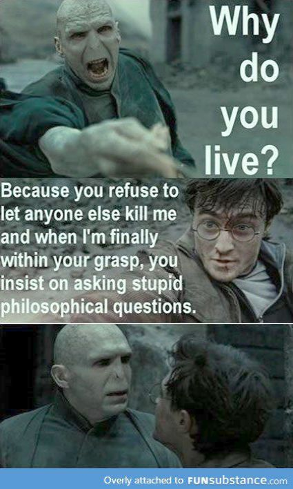 Harry Potter Quotes Funny Hermione Harry Potter Characters Deathly Hallows Harry Potter Jokes Harry Potter Memes Hilarious Harry Potter Memes