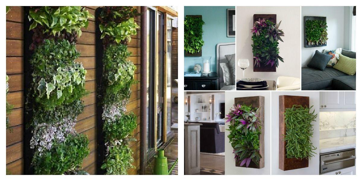 Diy Indoor Herb Garden herb garden near fridge | indoor vertical wall gardens | pinterest