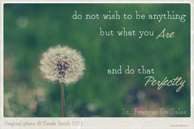 Wish Quotes Inspirational Wish Quotes Photo Art Dandelion  Quote Love