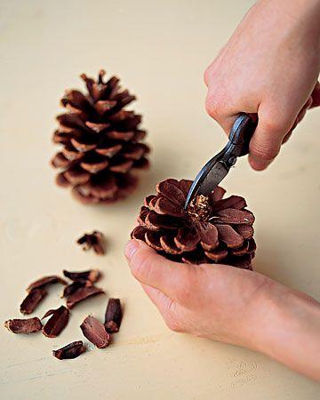 Pinecone Picture-Frame Ornaments  솔방울, 가을 및 크리스마스