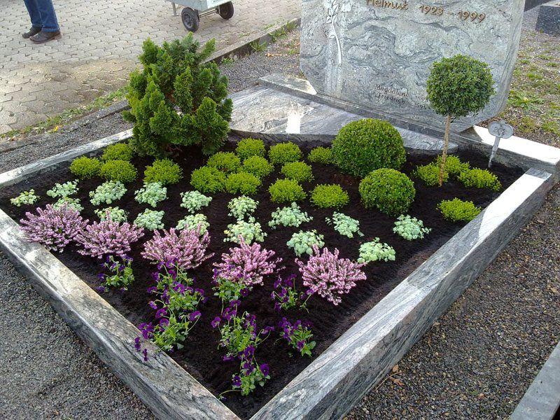 Was soll ich als Grabbepflanzung benutzen #patiodepapas