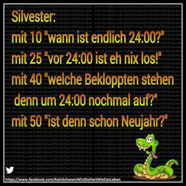 Silvester | Silvester sprüche, Silvester lustig und ...