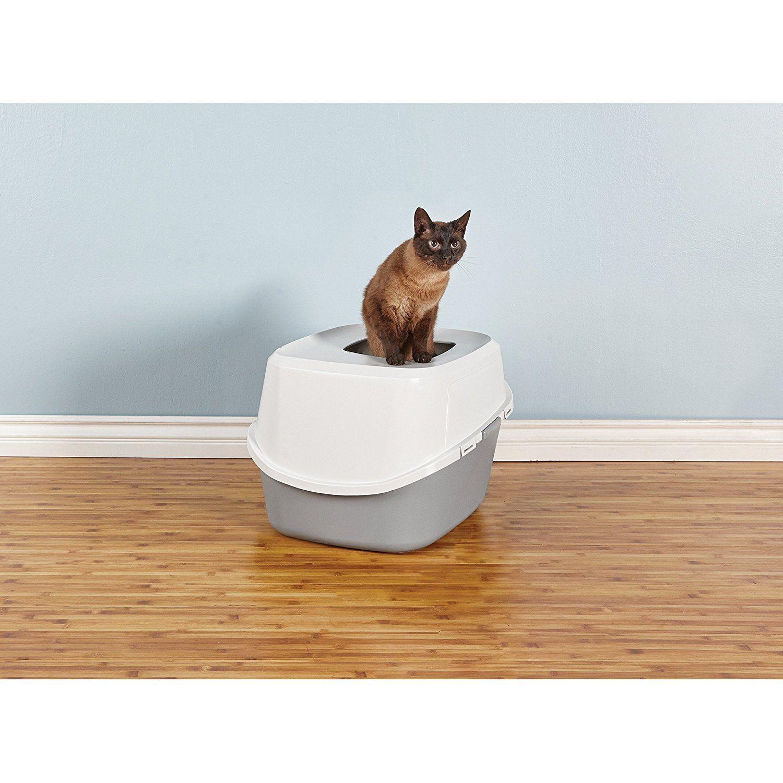 So Phresh Jumbo TopEntry Cat Litter Box in Grey 23 L x 19 W x 15