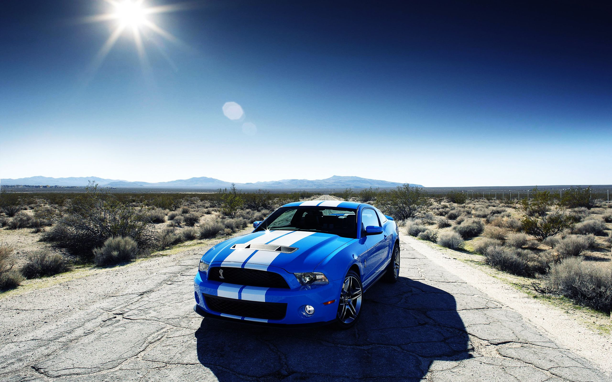 3d Background Desktop Cool Cars Ford Shelby Gt500 Car Ford Gt