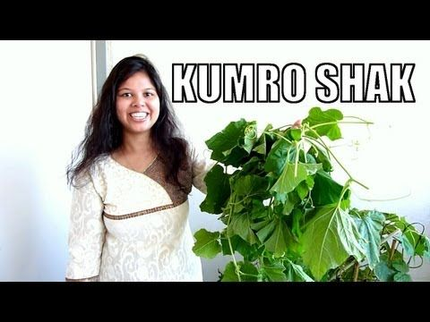 How to make pumpkin green curry kumro shak youtube httpsyoutu kumro shak or a dry curry prepared with pumpkin is a very traditional bengali recipe enjoy this kumro shak with hot steamed rice if you guys like the forumfinder Image collections