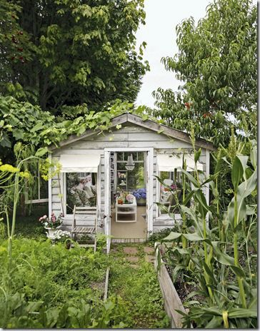 A little haven in the garden.