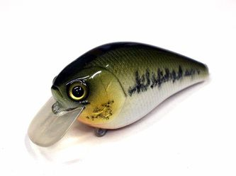 Baby Bass - Oscar Custom Crankbaits | Bass Fishing