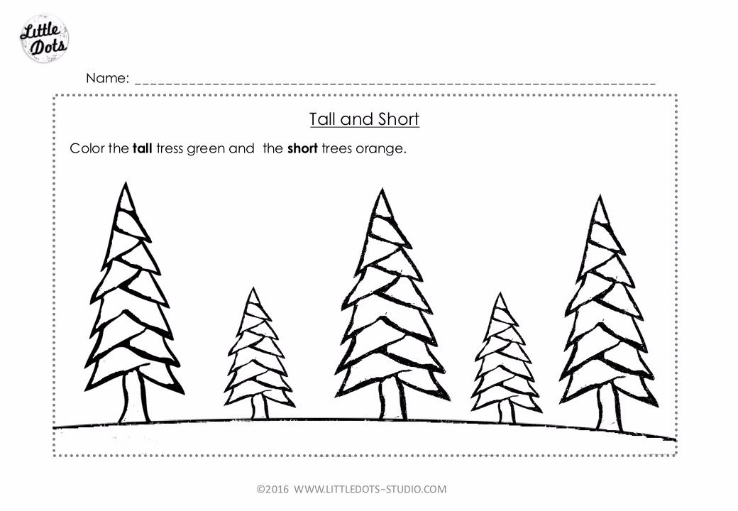 Free Pre-K measurement worksheet on tall and short ...
