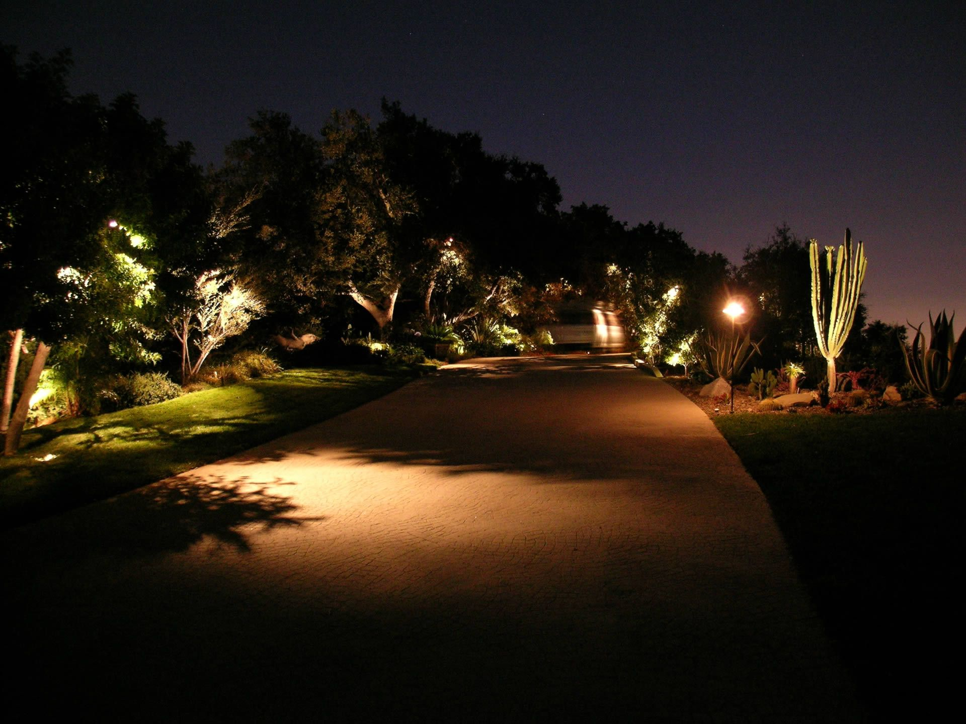 Featured Project Beverly Hills Landscape Lighting Led