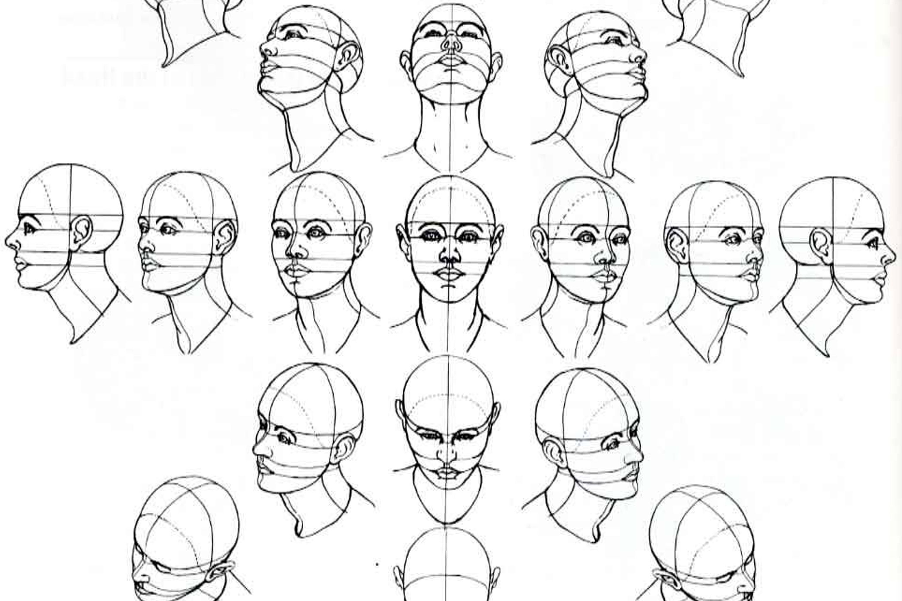 Drawing Angled Lines In Draftsight : How to draw female face from different angles google