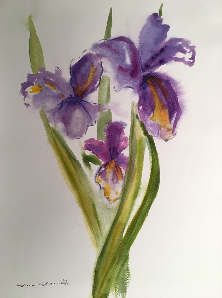 aquarelle originale dam domido fleurs iris aquarelle akoun. Black Bedroom Furniture Sets. Home Design Ideas