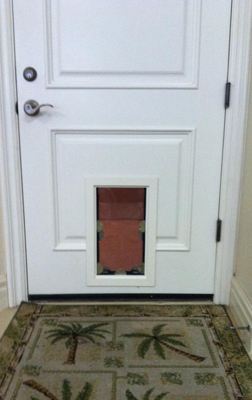 Get A Pet Door Installed By Phoenix Arizonas Leading Dog Door